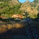 Baharda Casa Feronia - Spring At Casa Feronia