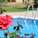 Casa Feronia Bahçemizden - From Our Garden
