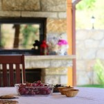 Taze Üzümler - Fresh Grapes